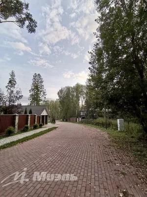 Продажа участка 21 с. в кп Сосновый бор - Фото 1