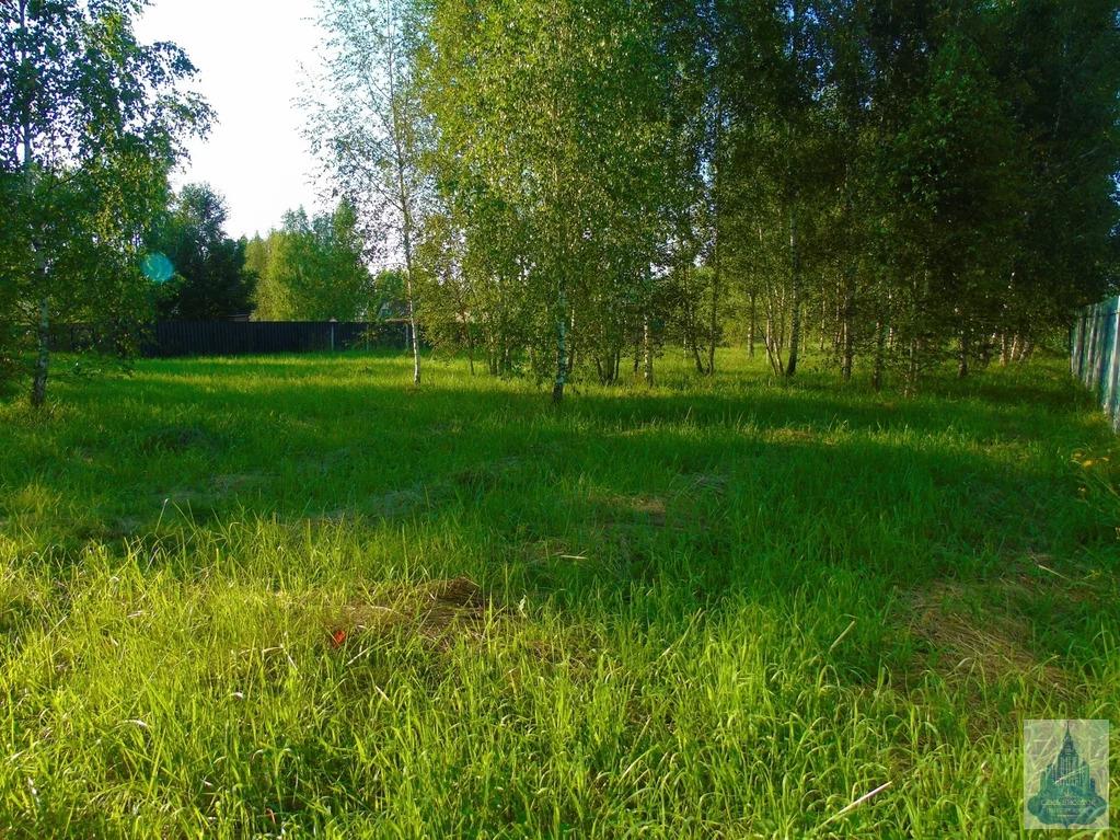 Продается участок, Старогромово д, СНТ Гавриково - Фото 3