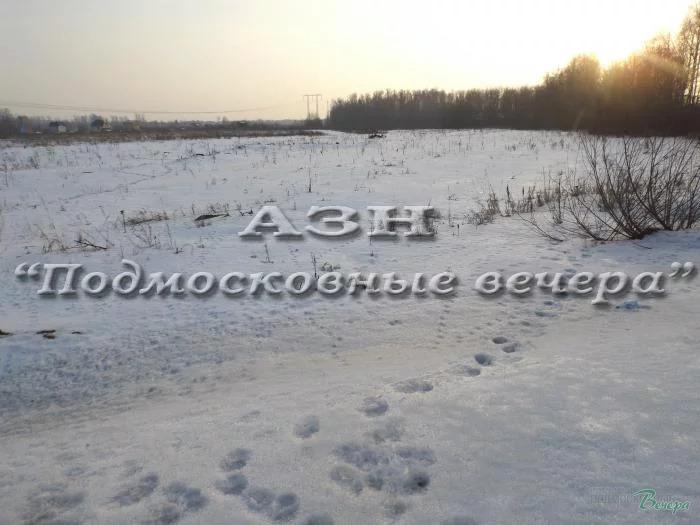 Горьковское ш. 42 км от МКАД, Ногинск, Участок 783 сот. - Фото 3