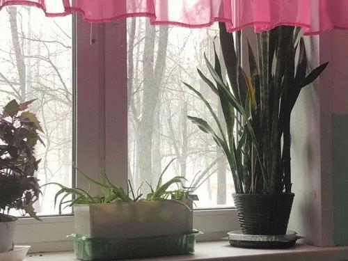 Продажа квартиры, м. Измайловская, Ул. Никитинская - Фото 3