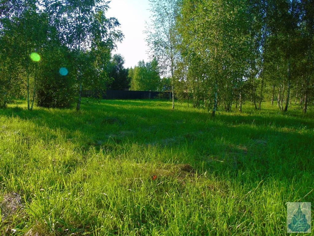 Продается участок, Старогромово д, СНТ Гавриково - Фото 5