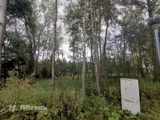 Продажа участка 21 с. в кп Сосновый бор - Фото 2