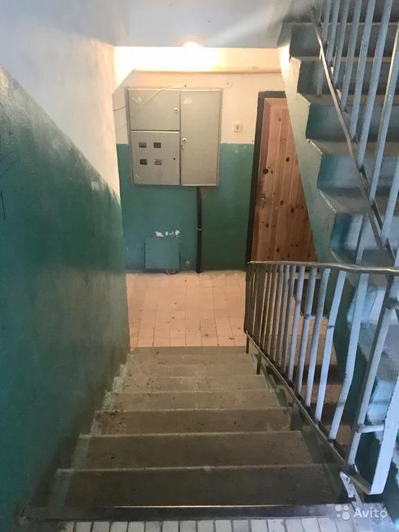 3-к квартира, 56.2 м, 1/9 эт. - Фото 17