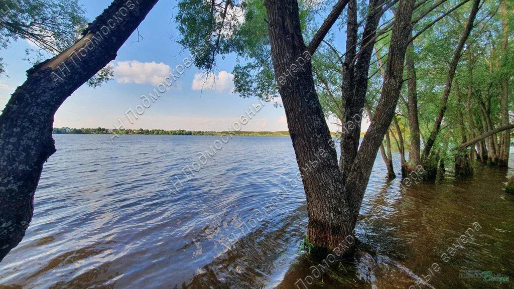 Минское ш. 125 км от МКАД, Крылатки, Участок 12 сот. - Фото 3