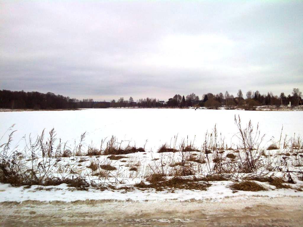 12 соток на берегу озера, МО, Рузский р-н. - Фото 13