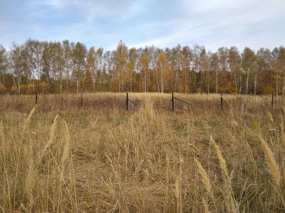 Продажа участка, Спасский, Советский район, Сушки - Фото 2