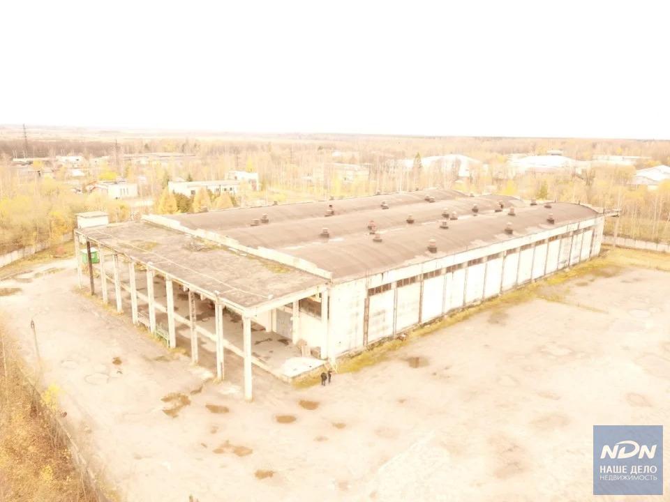 Продажа склада, Петушки, Петушинский район, Ул. Красноармейская - Фото 11