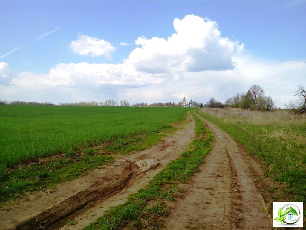 Купить земельный участок 12 соток в середине деревни, в Московской обл - Фото 3