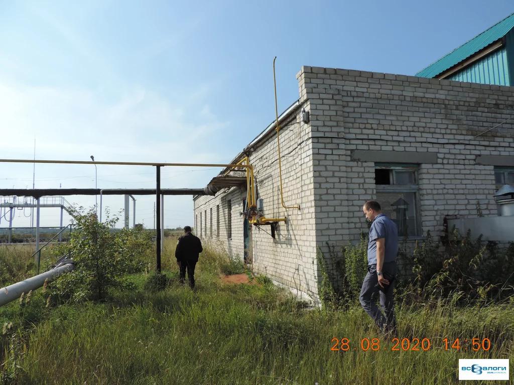 Продажа готового бизнеса, Введенское, Кетовский район - Фото 6