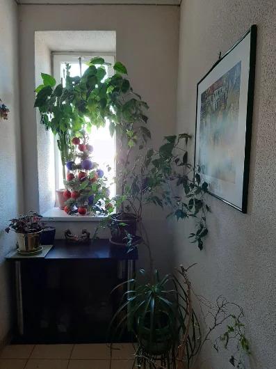 Продажа квартиры, Симферополь, Ул. Беспалова - Фото 6