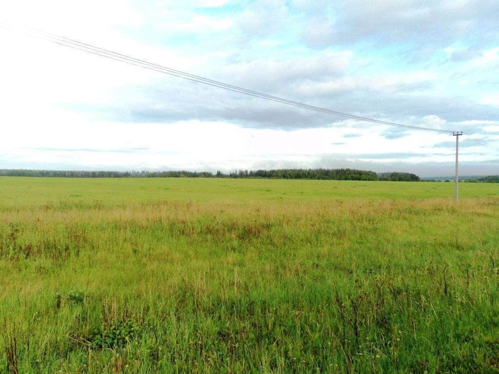 С/х земля 6,64 Га в деревне Милятино, асфальт, электричество, река - Фото 3