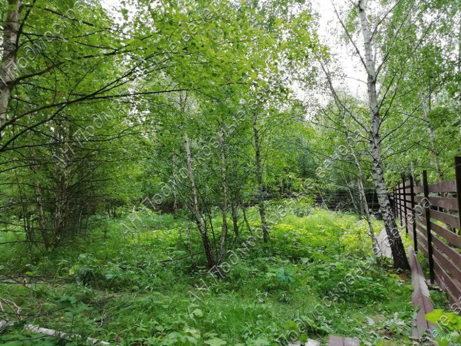Калужское ш. 30 км от МКАД, Шарапово, Участок 8.27 сот. - Фото 3