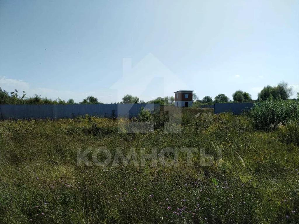 Продажа дома, Новогремяченское, Хохольский район, Озёрная улица - Фото 6