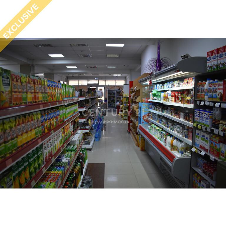 Продажа бизнеса (супермаркет 356 м2 по ул. И. Казака) - Фото 7