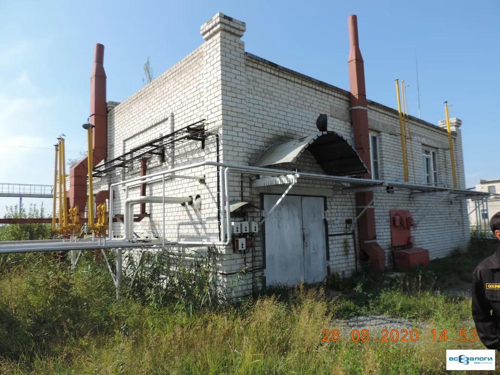 Продажа готового бизнеса, Введенское, Кетовский район - Фото 12