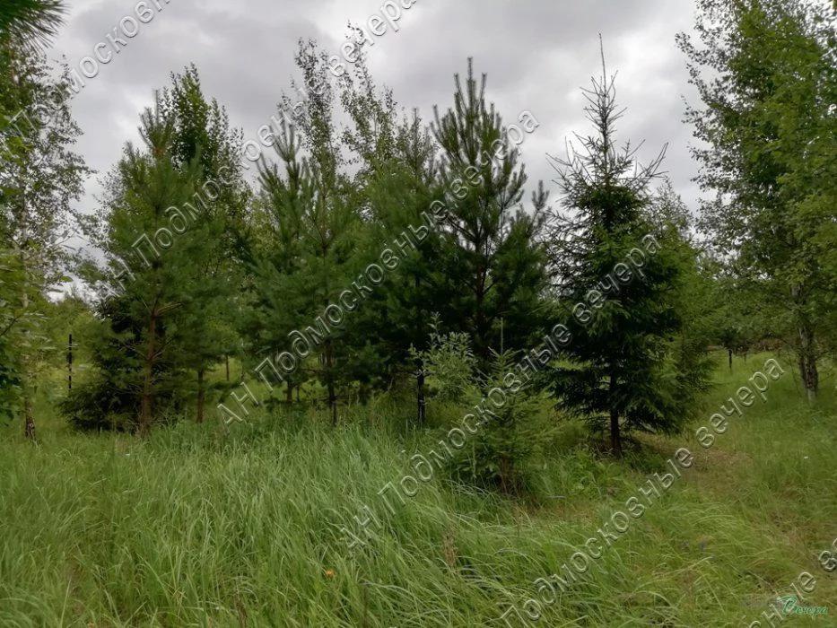 Калужское ш. 30 км от МКАД, Шарапово, Участок 8.27 сот. - Фото 4