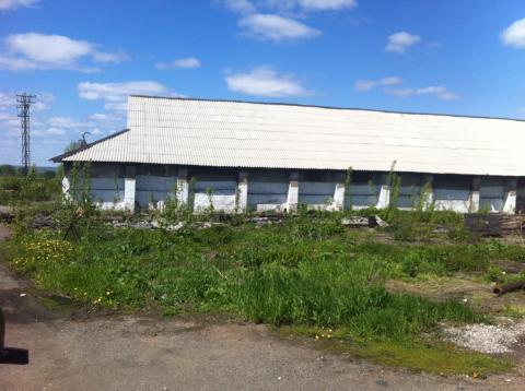 Элеватор ленинск кузнецкий опросный лист конвейера ленточного