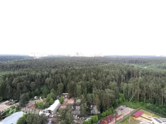 Продается 1к.кв, г. Балашиха, Изумрудный - Фото 16