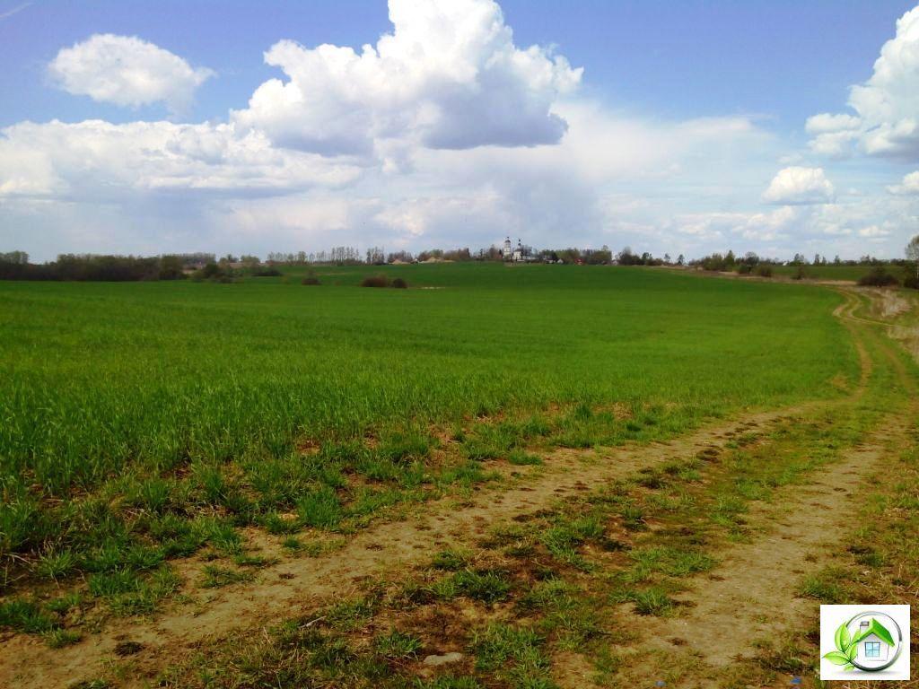 Купить земельный участок 12 соток в середине деревни, в Московской обл - Фото 12