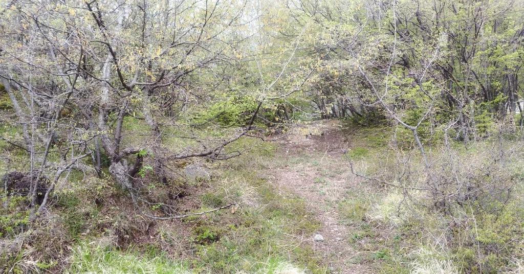 Продается земельный участок Респ Крым, г Ялта, ул Большевистская, д 2 - Фото 5