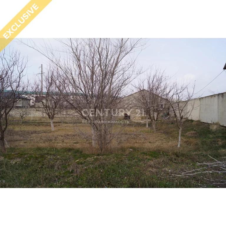 Продажа земельного участок в пгт Тюбе 24 сотки - Фото 4