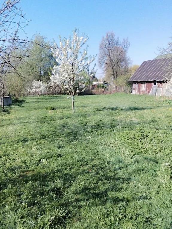 Продажа участка, Прокшино, Сосенское с. п. - Фото 1