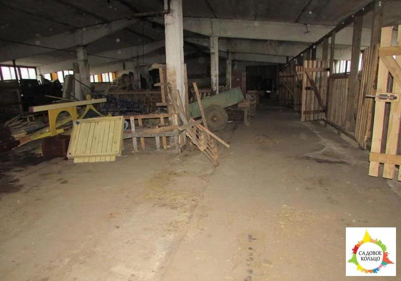 Назначение: производство, склад, автосервис, другое, мастерская, база - Фото 12