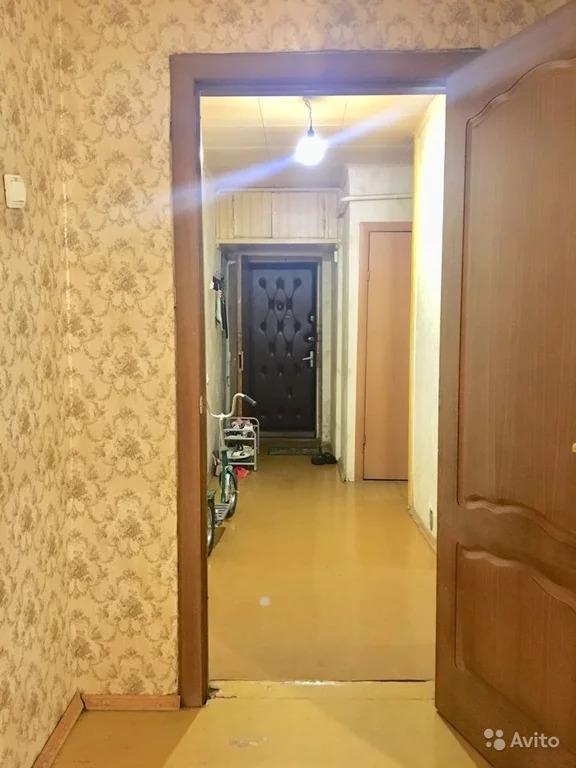 3-к квартира, 56.2 м, 1/9 эт. - Фото 8