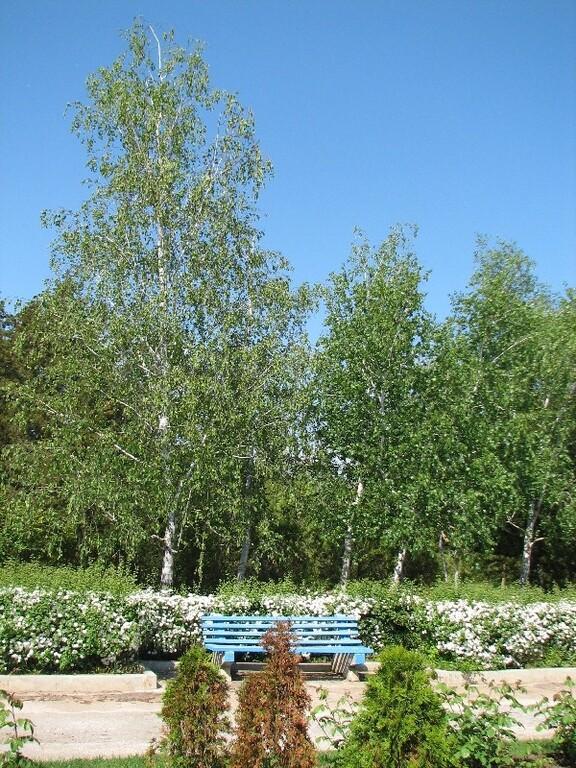 Пансионат в самом солнечном городе Крыма со своим пляжем - Фото 7