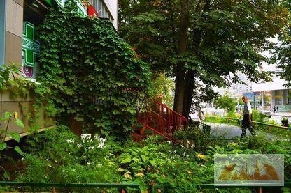 Продажа 1-комн.квартира 35,6кв.м , Ул.Грекова,10 - Фото 7