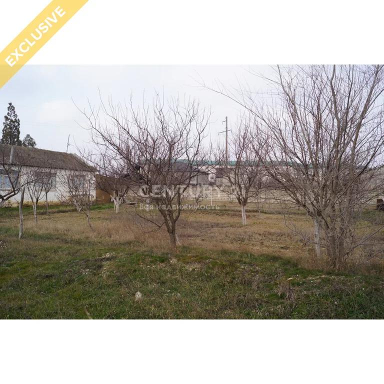 Продажа земельного участок в пгт Тюбе 24 сотки - Фото 3