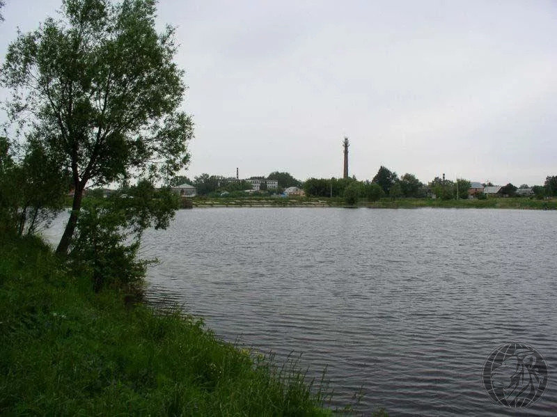 Участок 7 соток Лукошкино, Кленово, новая Москва, ИЖС - Фото 4