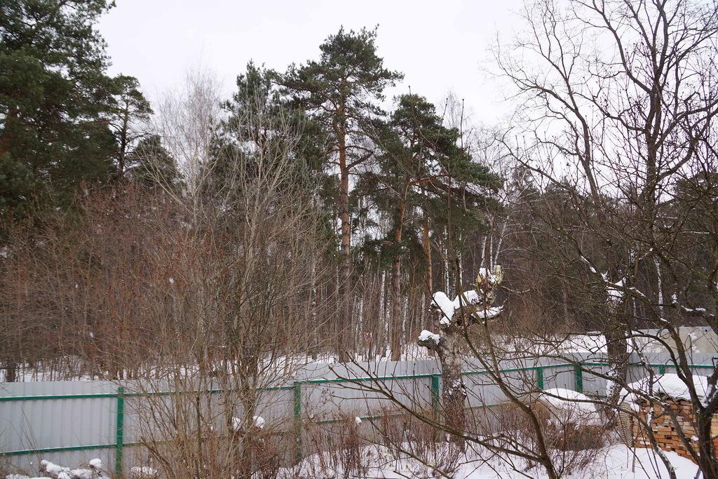Дуплекс в Салтыковке - Фото 7