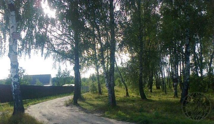 Участок 4,5 сотки в СНТ Ветеран вс, Чеховский район - Фото 0