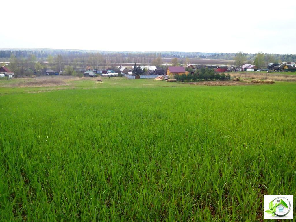 Купить земельный участок 12 соток в середине деревни, в Московской обл - Фото 7