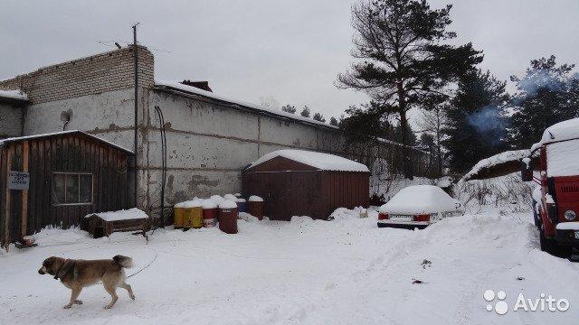 Производственное помещение, 500 м д. Бор - Фото 0