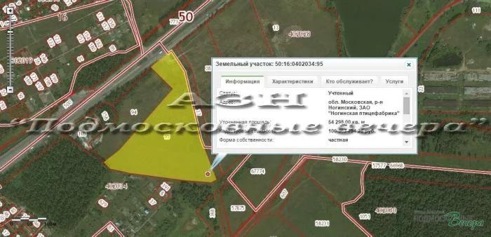 Горьковское ш. 42 км от МКАД, Ногинск, Участок 783 сот. - Фото 12