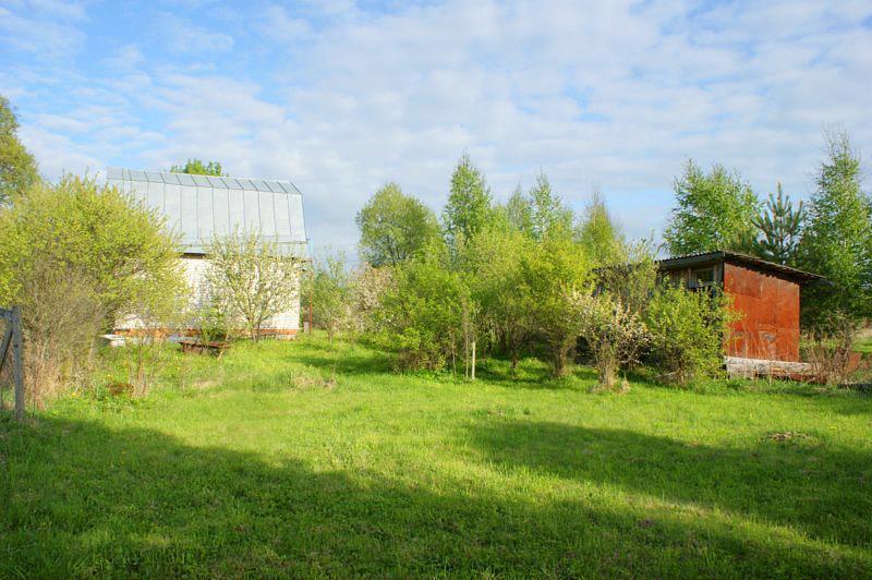 Дом в деревне Гарутино с участком для ПМЖ. Рядом водоем, лес, речка. - Фото 18