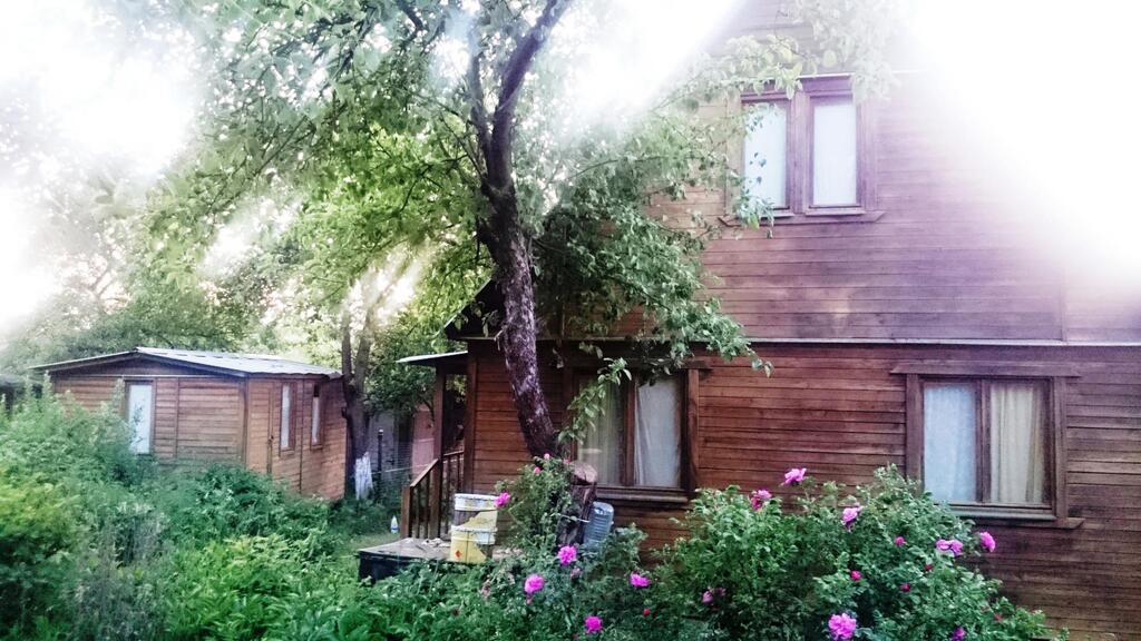 Продам уютный оазис - Фото 0