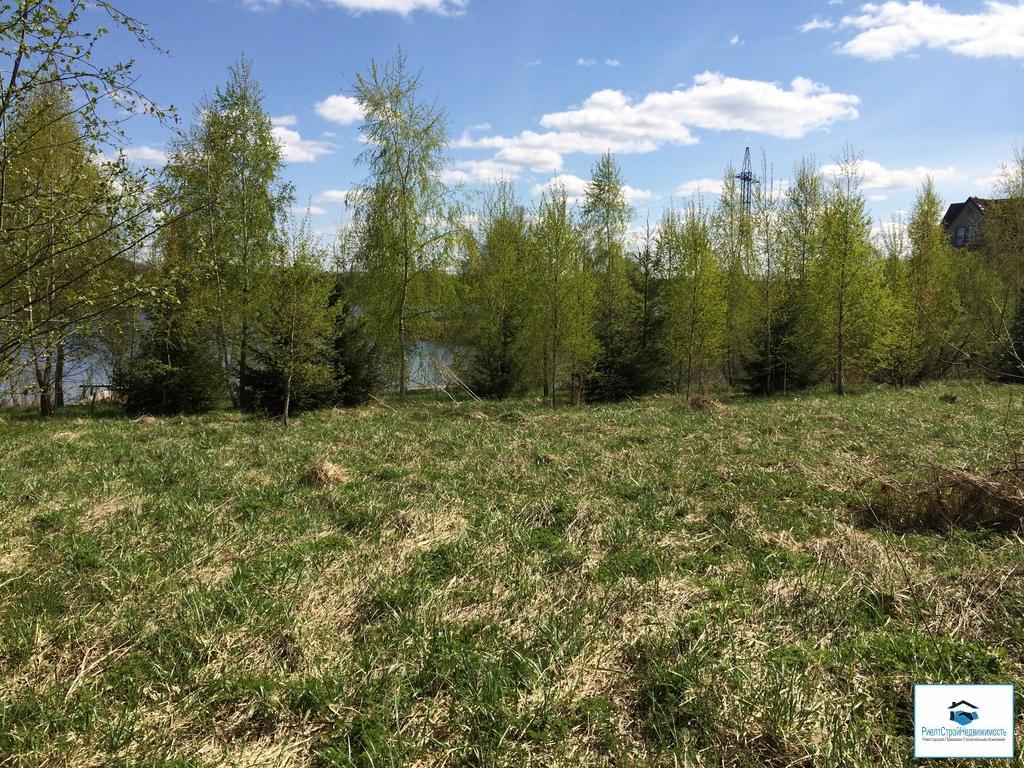 Лесной участок на первой береговой линии водохранилища 1.5га эксклюзив - Фото 2