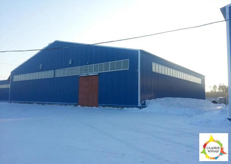 Сдаю склад. Холодное складское помещение в Складском комплексе на охра - Фото 4