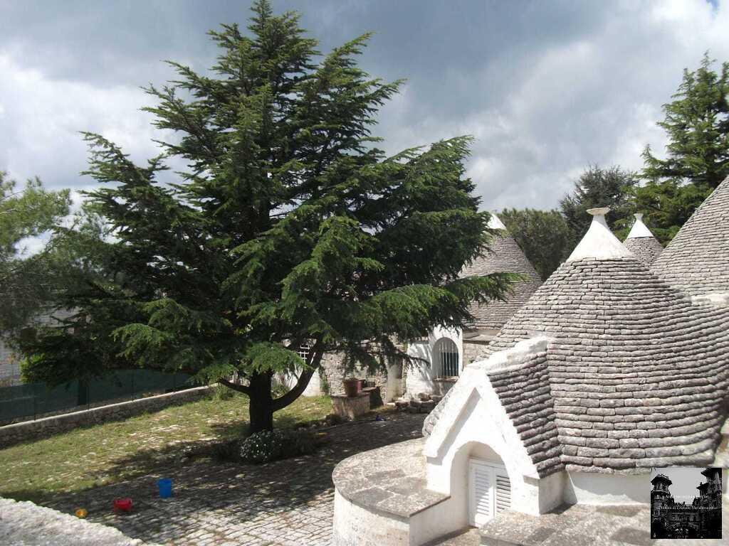 Усадьба с Трулли в Сельва - ди – Фазано, Апулия, Италия - Фото 16