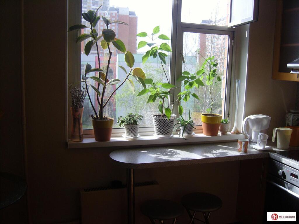Продажа 1- комнатной квартиры, м.Братиславская - Фото 10