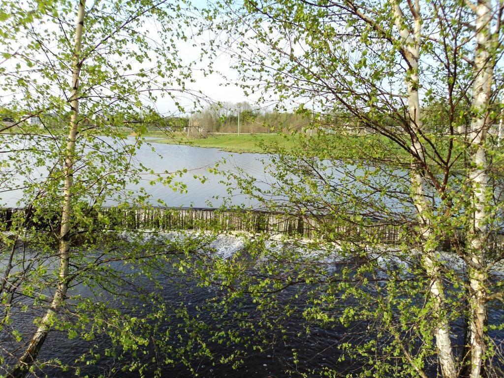 12 соток на берегу озера, МО, Рузский р-н. - Фото 5