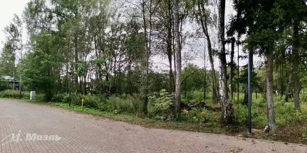 Продажа участка 21 с. в кп Сосновый бор - Фото 0