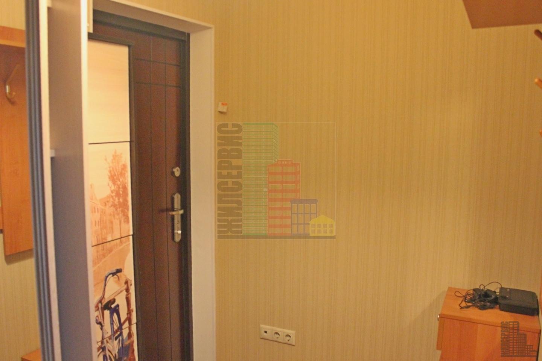 Однокомнатная квартира со свежим евроремонтом - Фото 10