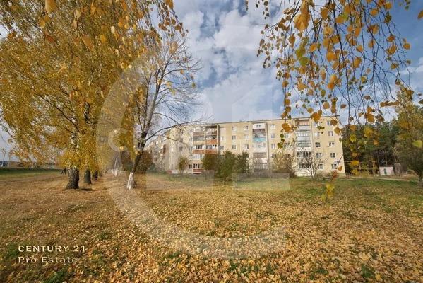 Продается 4 -х комнатная квартира по низкой цене в экологически чис. - Фото 19