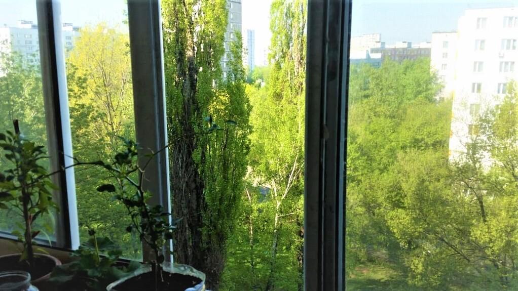 Продаем 3х-комнатную квартиру ул. Шоссейная, д.19к1 - Фото 3