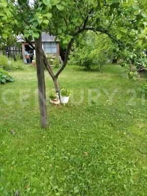 Продается дом, Быньги с, Нагорная ул. - Фото 13
