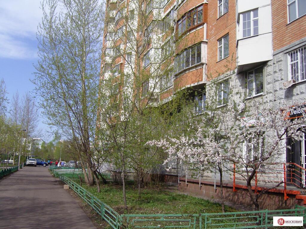 Продажа 1- комнатной квартиры, м.Братиславская - Фото 2